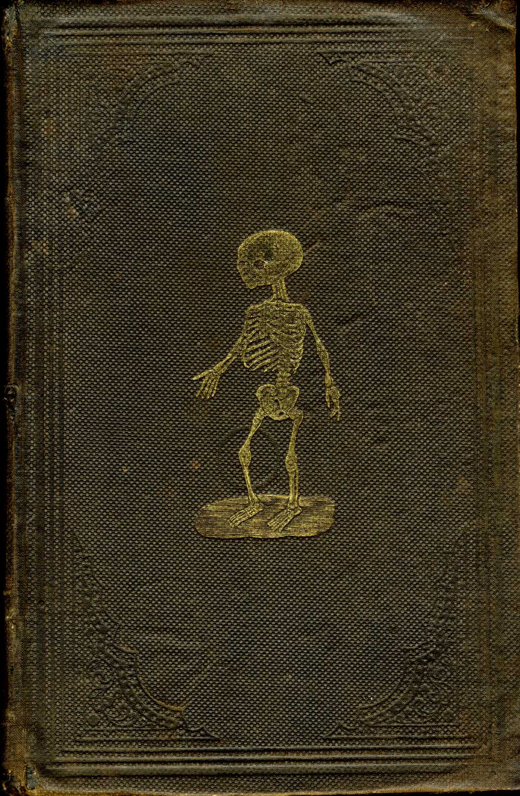 Beautiful Old Book Covers : Civil war era medical books page